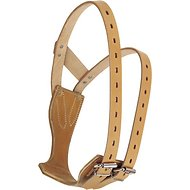 Weaver Leather Horse Miracle Collar, Golden Brown, Small