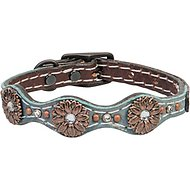 Weaver Pet Savannah Leather Dog Collar, 13-in
