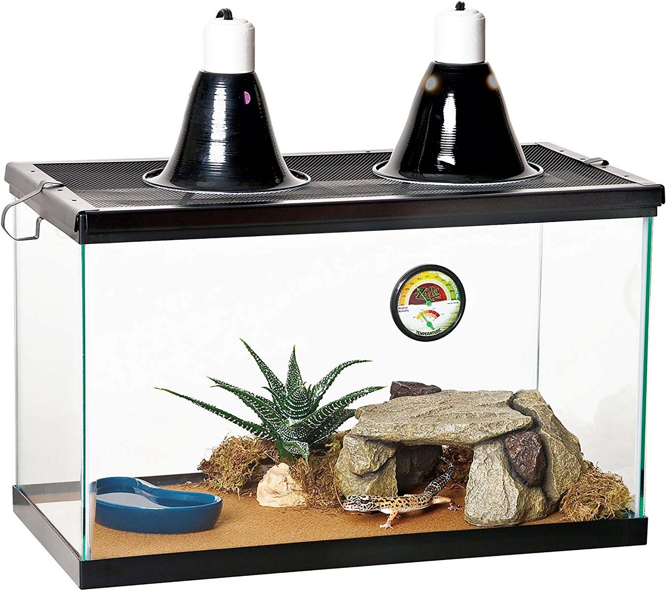 Zilla Desert Reptile Terrarium Starter Kit With Light And Heat 10 Gal Chewy Com