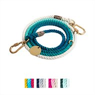 Found My Animal Adjustable Ombre Rope Dog Leash, Teal, 7-ft, Large