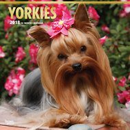 Yorkshire Terriers 2018 Wall Calendar