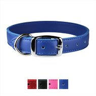 OmniPet Signature Leather Dog Collar, Blue, 22-in