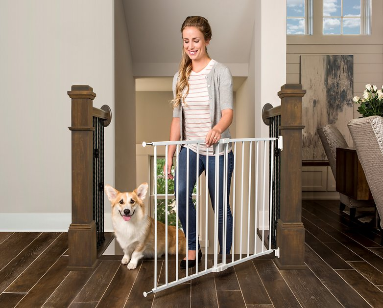Regalo Top Of Stairs Gate 30 5 In Chewy Com