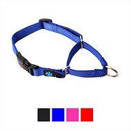 Max and Neo Dog Gear Martingale Nylon Dog Collar, Blue, Medium/Large