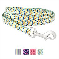 Frisco Patterned Dog Leash, Bright Chevron, 6-ft, 3/8-in