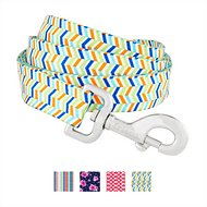 Frisco Patterned Dog Leash, Bright Chevron, 6-ft, 1-in