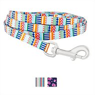 Frisco Patterned Polyester Dog Leash, Geo Graphic Print, X-Small: 6-ft long, 3/8-in wide