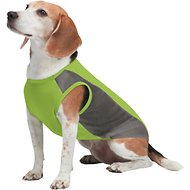 Insect Shield Breathable Mesh Dog T-Shirt, Green, X-Small