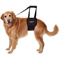 GingerLead Support & Rehabilitation Large Breed Female Dog Lifting Sling Harness
