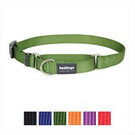 Red Dingo Martingale Classic Dog Collar, Green, Medium