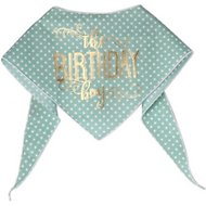 Tail Trends The Birthday Boy Dog & Cat Bandana, Large