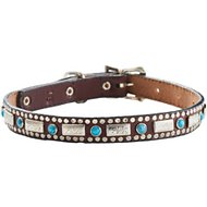 Woofwear Silver & Turquoise Brown Leather Dog Collar, 14-in