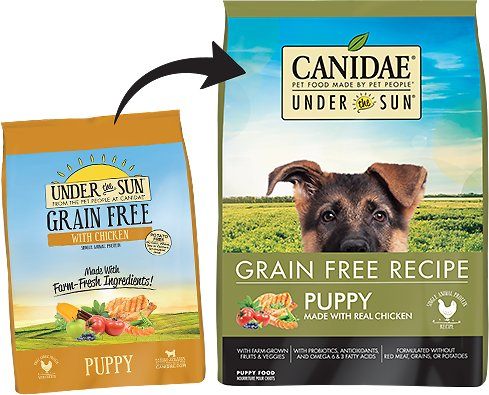 Under the Sun Grain-Free Chicken Recipe Puppy Dry Dog Food, 25-lb ...