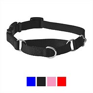 Frisco Solid Martingale Dog Collar with Buckle, Black, Small