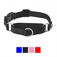 Frisco Solid Martingale Dog Collar with Buckle, Black, Medium