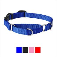 Frisco Solid Martingale Dog Collar with Buckle, Blue, Small