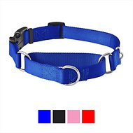 Frisco Solid Martingale Dog Collar with Buckle, Blue, Medium