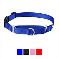 Frisco Solid Martingale Dog Collar with Buckle, Blue, Large