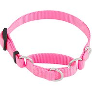 Frisco Solid Martingale Dog Collar, Pink, X-Small
