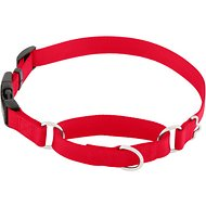 Frisco Solid Martingale Dog Collar with Buckle, Red, Large