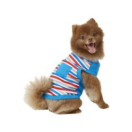 Frisco Striped Dog T-Shirt, Red White & Blue, Medium
