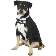 Frisco Formal Dog Tuxedo, Black, Large