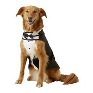 Frisco Formal Dog Tuxedo, Black, X-Large