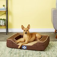 Sealy Lux Premium Orthopedic Dog Bed, Brown, Small