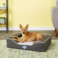 Sealy Lux Premium Orthopedic Dog Bed, Grey, Small