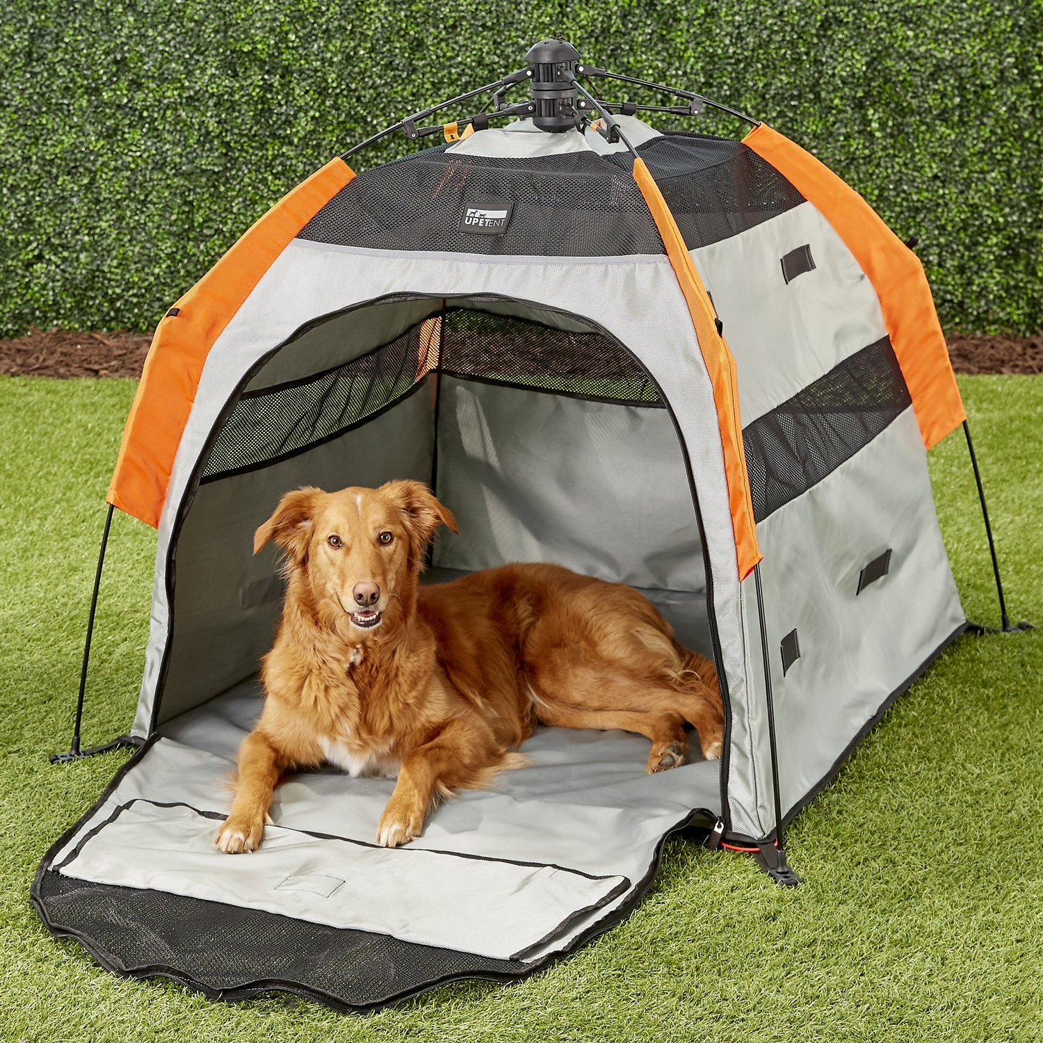 video  sc 1 st  Chewy.com & Petego Umbra Pet Portable Dog Tent Large - Chewy.com