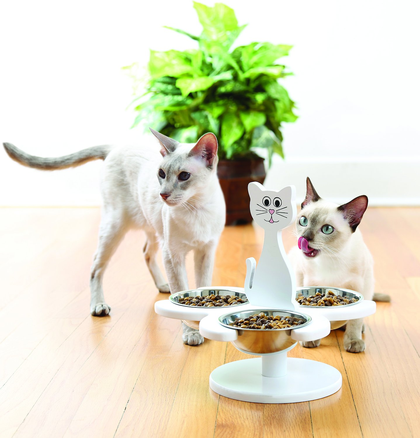 Etna Wooden Multi Cat Feeder White Chewy Com