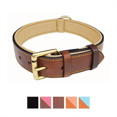 Soft Touch Real Leather Padded Dog Collar – The Best Leather Dog Collar