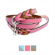 Soft Touch Collars Leather Braided Two-Tone Dog Leash, Pink, 6-ft, 3/4-in