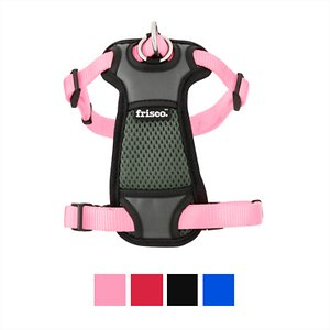 Frisco Padded Nylon No Pull Dog Harness