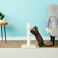Frisco 21-in Sisal Cat Scratching Post with Toy, Cream