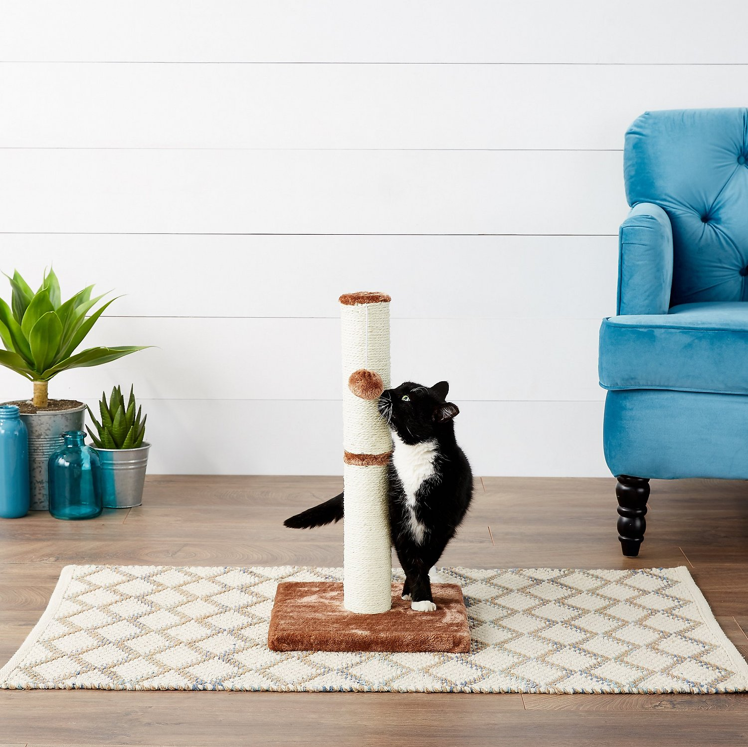 Frisco 21-in Cat Scratching Post with Toy, Brown
