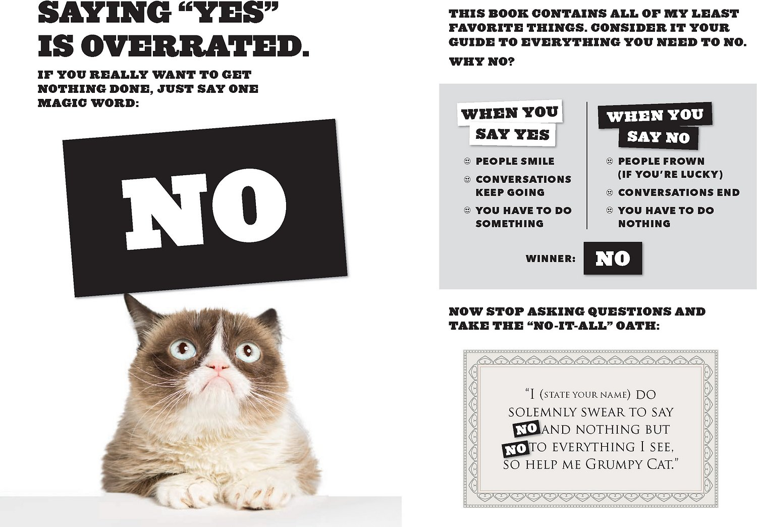Grumpy Cat No It All Everything You Need To No Chewy Com