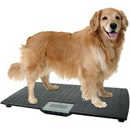 Redmon Precision Digital Pet Scale, Large