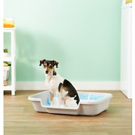 Puppy Pan Dog, Cat & Small Animal Litter Pan, Gray, Large