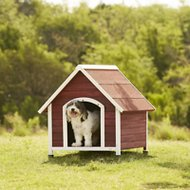 Petsfit Wooden Hinged Roof Dog House, Gray, Large
