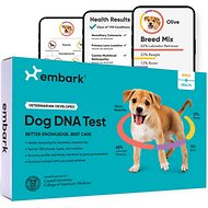Embark Breed & Ancestry Identification, Trait & Health Detection Dog DNA Test Kit