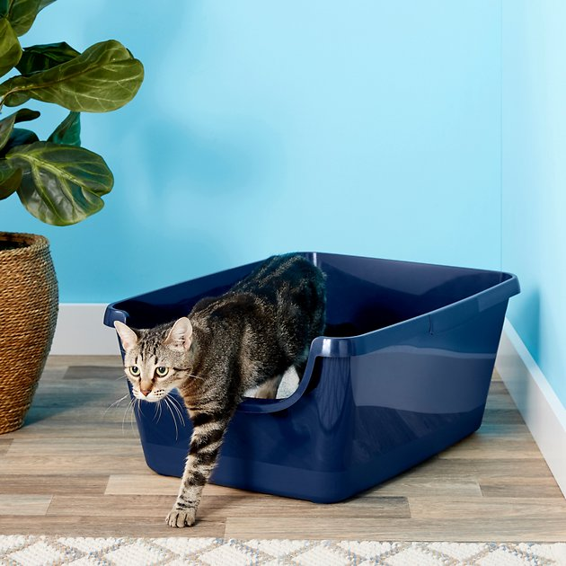 frisco high sided cat litter box navy extra large 24 in. Black Bedroom Furniture Sets. Home Design Ideas