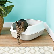 Frisco Open Top Cat Litter Box With Rim, Gray, Large 19-in