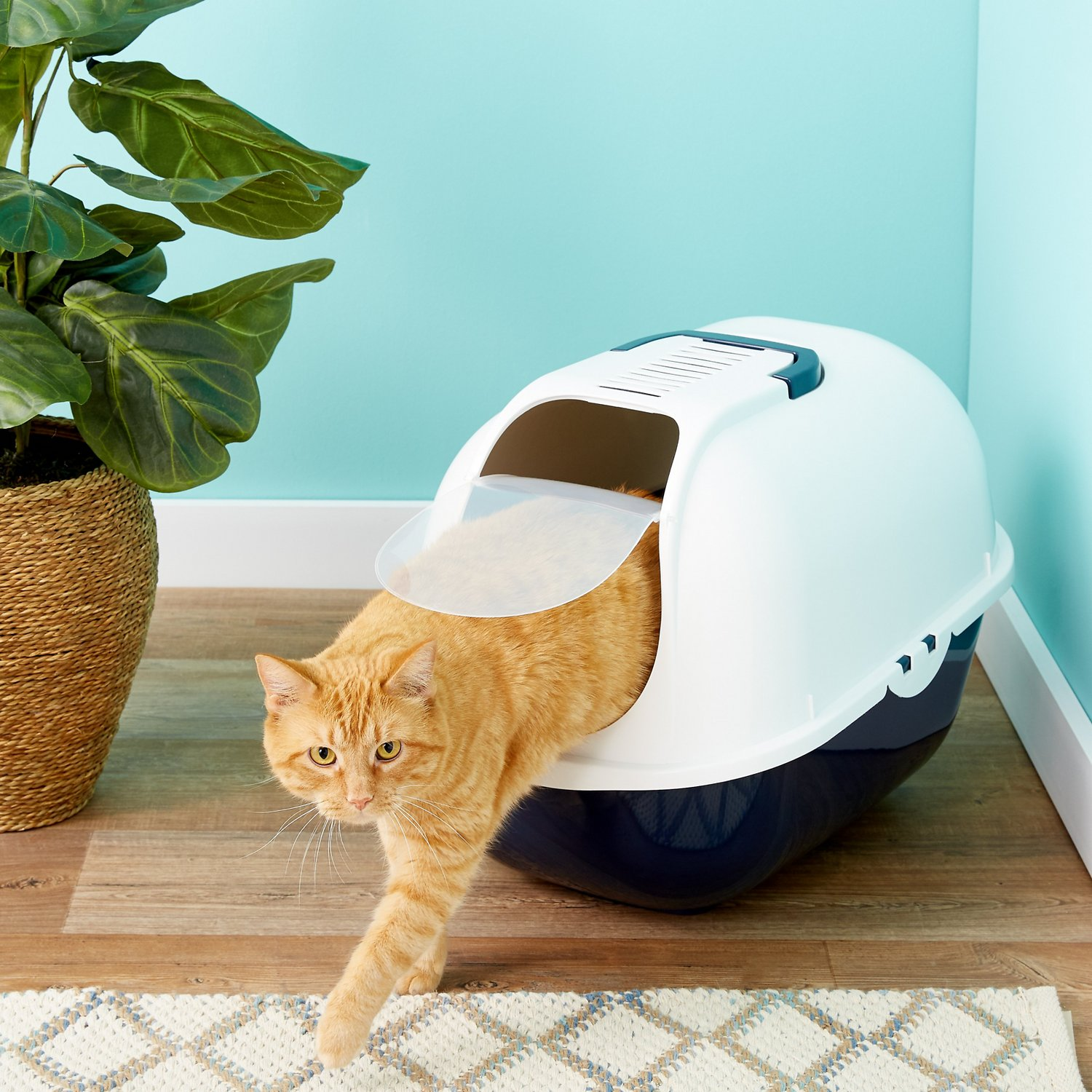Frisco Hooded Cat Litter Box Navy Large 20 In Chewy Com