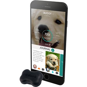 FitBark 2 Water Resistant Dog Activity & Sleep Monitor