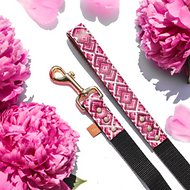 FriendshipCollar Pedigree Princess Dog Leash, 5-ft