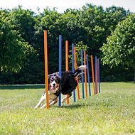 Trixie Agility Slalom Dog Training Poles