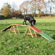 Trixie Agility Dog Training Dogwalk