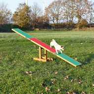 Trixie Agility Dog Training Seesaw