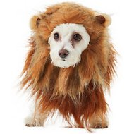 California Costumes Lion Mane Dog & Cat Costume, X-Small